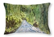 New Mexico Canyon Impression Throw Pillow