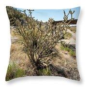 New Mexico Cholla Throw Pillow