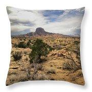 New Mexico Throw Pillow