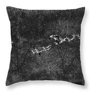New Mexico Light Throw Pillow