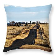 New Mexico Road Throw Pillow