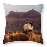 New Monarch Of The Glen Throw Pillow