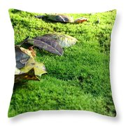 New Moss Throw Pillow