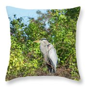 New Nest For Great Blue Heron Throw Pillow