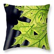 New Oak Leaves    Throw Pillow