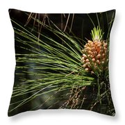New Pine Cone Throw Pillow