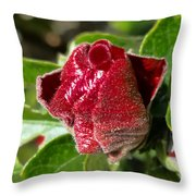 New Red Hibiscus Throw Pillow