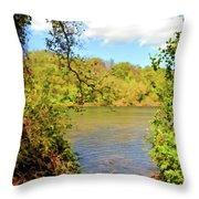 New River Views - Bisset Park - Radford Virginia Throw Pillow