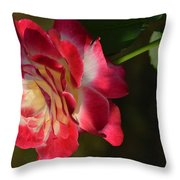 New Rose Revealed Throw Pillow