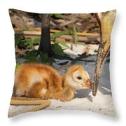 New Sunny Day Throw Pillow