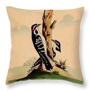 New System Of Ornithology Throw Pillow