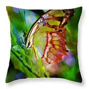 New Wings Throw Pillow