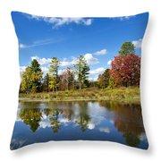 New York Autumn Landscape Throw Pillow