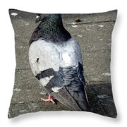 New York City Pigeons # Throw Pillow