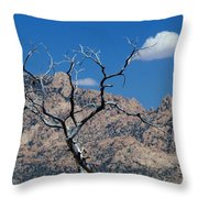 New York Mountains #1 Throw Pillow