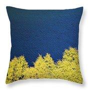 New Zealand Autumn Throw Pillow