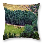 New Zealand Countryside Throw Pillow