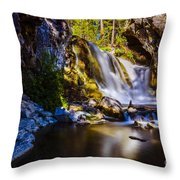 Newberry Country Throw Pillow