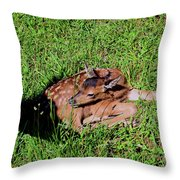 Newborn Red Deer Throw Pillow