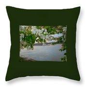 Newburg Indiana  Throw Pillow