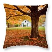 Newbury Common Throw Pillow