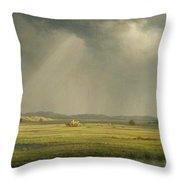 Newburyport Meadows  Throw Pillow
