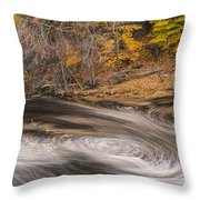 Newton Upper Falls Dual Whirlpool Newton Ma Throw Pillow