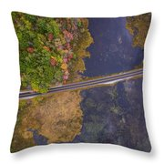 Nh Autumn Throw Pillow
