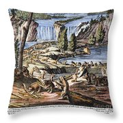 Niagara Falls: Beavers, 1715 Throw Pillow