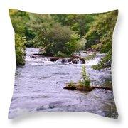 Niagara River  Throw Pillow