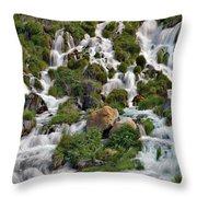 Niagara Springs Throw Pillow