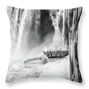 Niagra Winter Scene 1 Throw Pillow