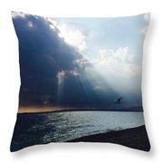 Nice Beach Throw Pillow