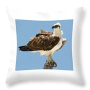 Nice Breeze Throw Pillow