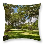 Nice Spot For Lunch Throw Pillow