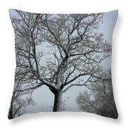 Nicely Frosted Throw Pillow