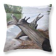 Nickajack Driftwood Throw Pillow