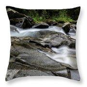 Nickel Creek Throw Pillow