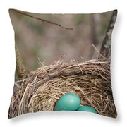 Nidos De Pajaros Throw Pillow