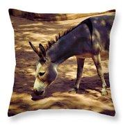 Nigerian Donkey Throw Pillow