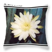 Night Bloomer Posters Throw Pillow