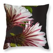 Night Bloomers Throw Pillow