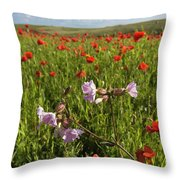 Night Flowering Catchfly And Poppies Throw Pillow