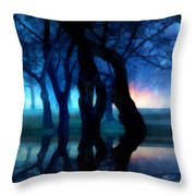 Night Fog In A City Park Throw Pillow