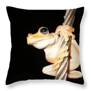 Night Frog Throw Pillow