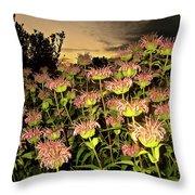 Night Garden Series Throw Pillow