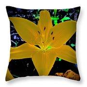 Night Glow Lily Throw Pillow