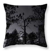 Night In The Druid Cathedral Throw Pillow