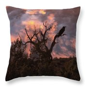 Night Of The Raven Throw Pillow