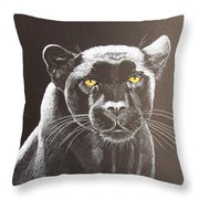 Night Reflection Throw Pillow